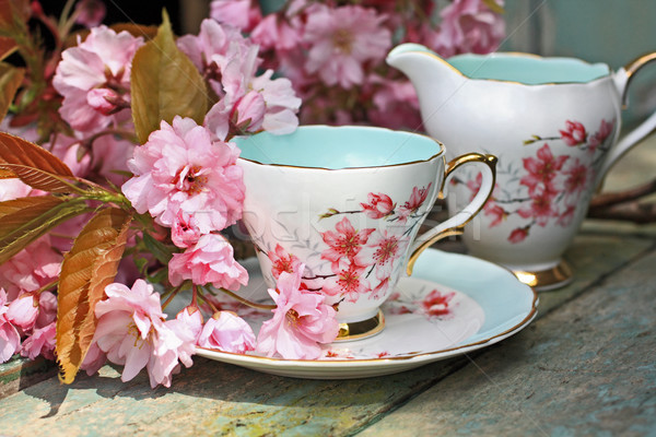 Belle japonais cerise arbre tasse thé Photo stock © Julietphotography