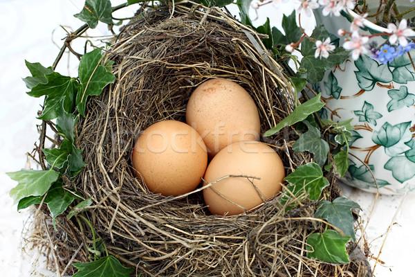 Stock photo: Three eggs in a bird's nest