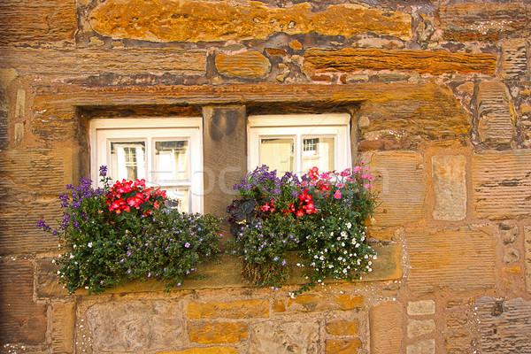 Pici ablakok virágok ház fal otthon Stock fotó © Julietphotography