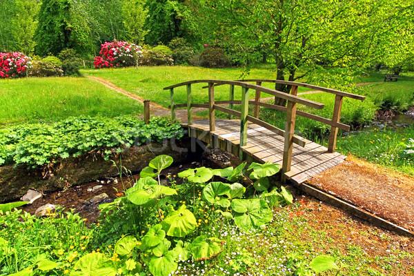 Stock photo: Old wooden bridge in a beautiful garden