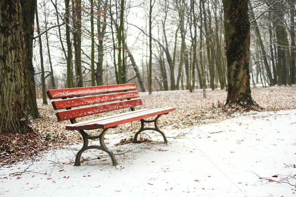 ed bench in the park covered with snow in winter Stock photo © Julietphotography