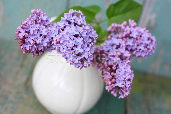 сирень Vintage ваза цветок природы Сток-фото © Julietphotography