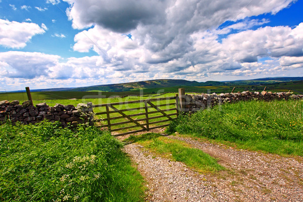 Beautiful landscape with stone walls, Yorkshire, England , Great Britain Stock photo © Julietphotography