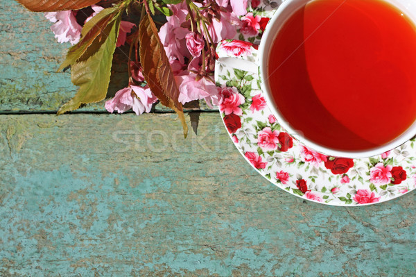 Stock photo: Beautiful japanese cherry tree and a cup of tea