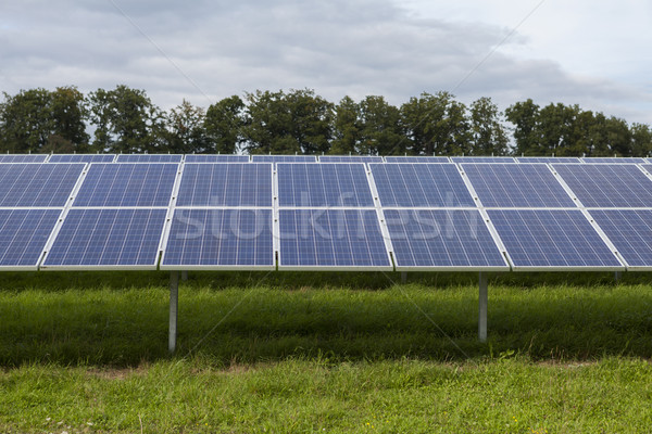 Field with blue siliciom solar cells alternative energy Stock photo © juniart