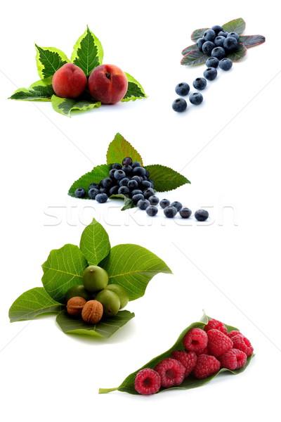 Fruits récolte ensemble temps Photo stock © kaczor58