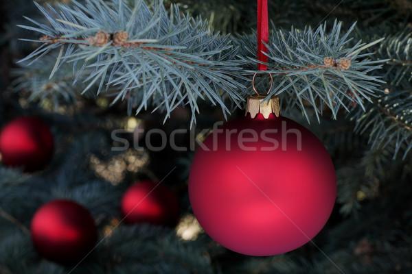 Navidad tiempo hojas perennes ataviar árbol vidrio Foto stock © kaczor58