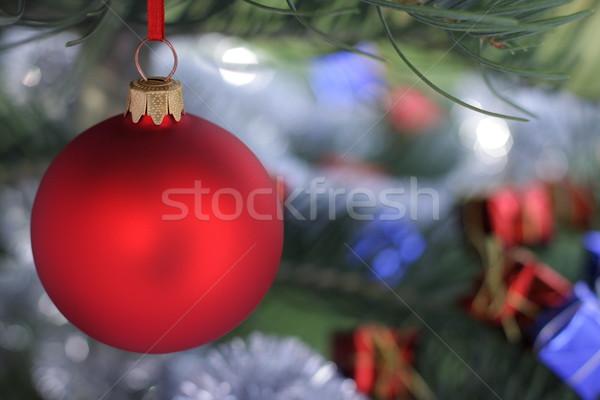 Рождества время вечнозеленый ель дерево стекла Сток-фото © kaczor58