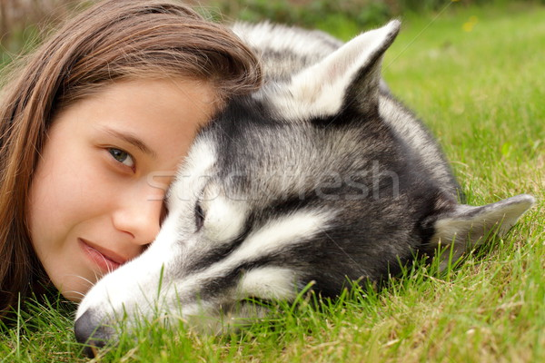 подростку девушки Husky друга люди любви Сток-фото © kaczor58