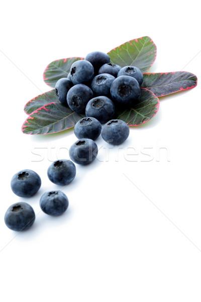 зрелый BlackBerry фрукты урожай время Сток-фото © kaczor58