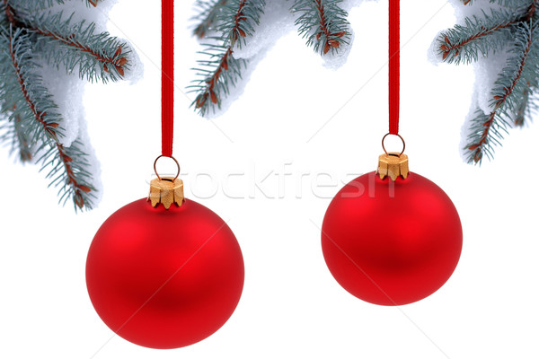 Stockfoto: Christmas · tijd · evergreen · sparren · boom · glas