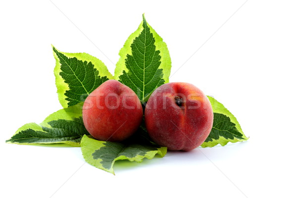 зрелый персика фрукты урожай время Сток-фото © kaczor58