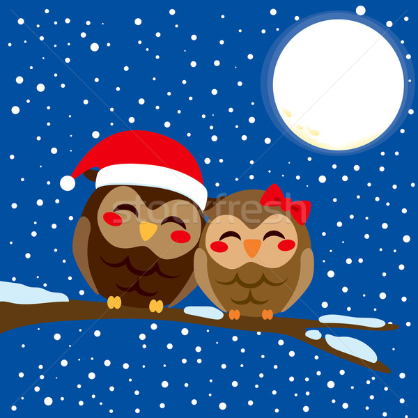 Christmas Owl Love Stock photo © Kakigori