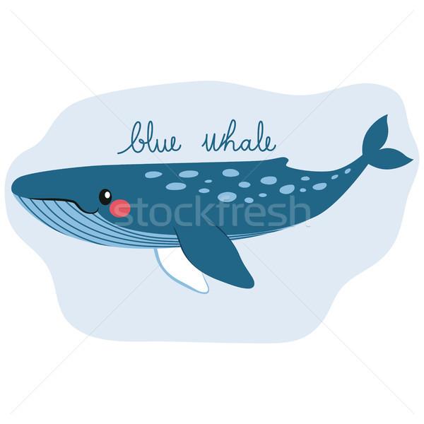 Aranyos kék bálna boldog víz vízalatti Stock fotó © Kakigori