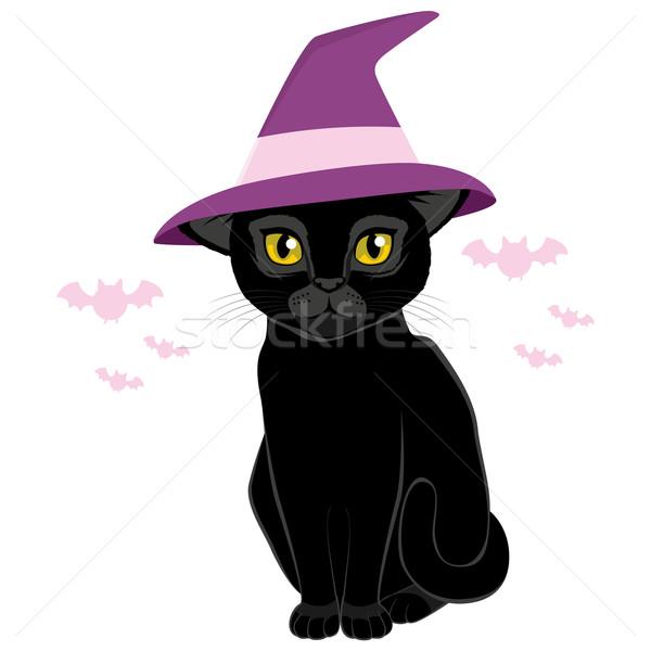 ハロウィン 魔女の帽子 黒猫 実例 かわいい パーティ ストックフォト © Kakigori