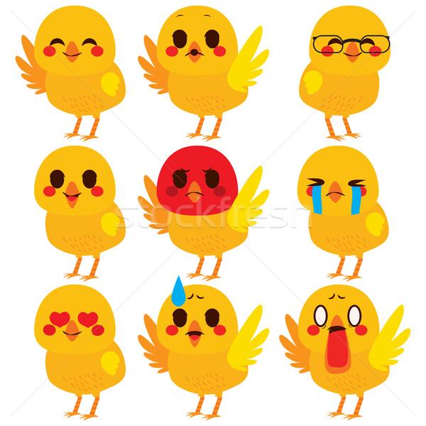 Aranyos csirke kifejezések szett gyűjtemény különböző Stock fotó © Kakigori