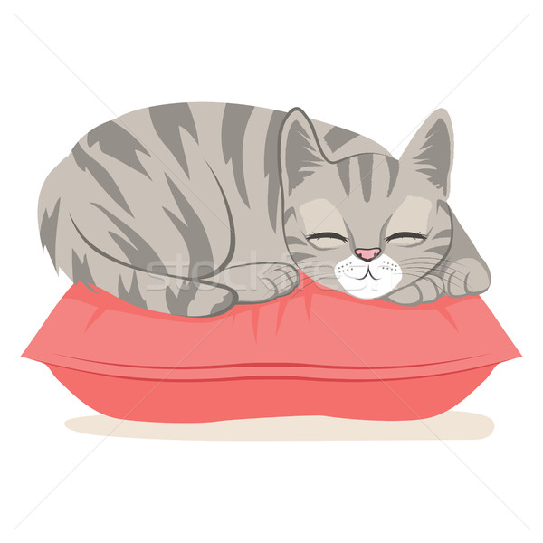 Cat Sleeping On Pillow Stock photo © Kakigori