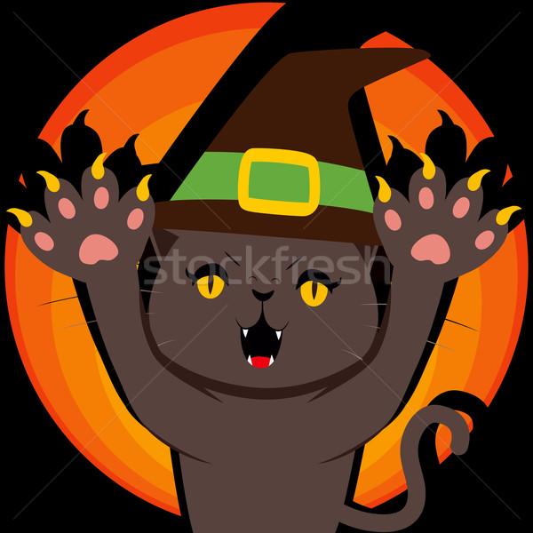 Ameaçador bruxa gato preto halloween Foto stock © Kakigori