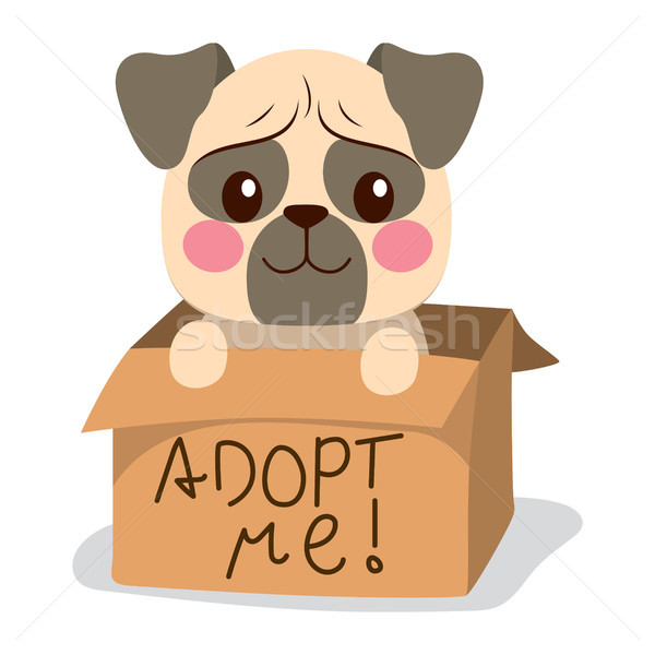 Adopt Me Dog Stock photo © Kakigori