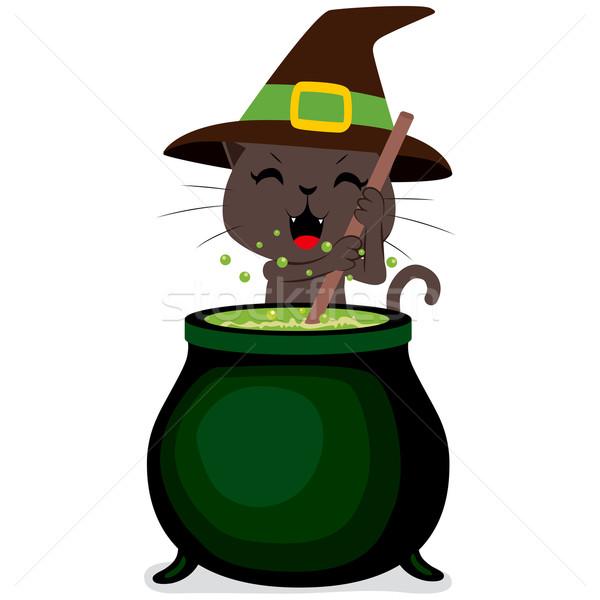 Halloween macska üst boldog boszorkány főzés Stock fotó © Kakigori