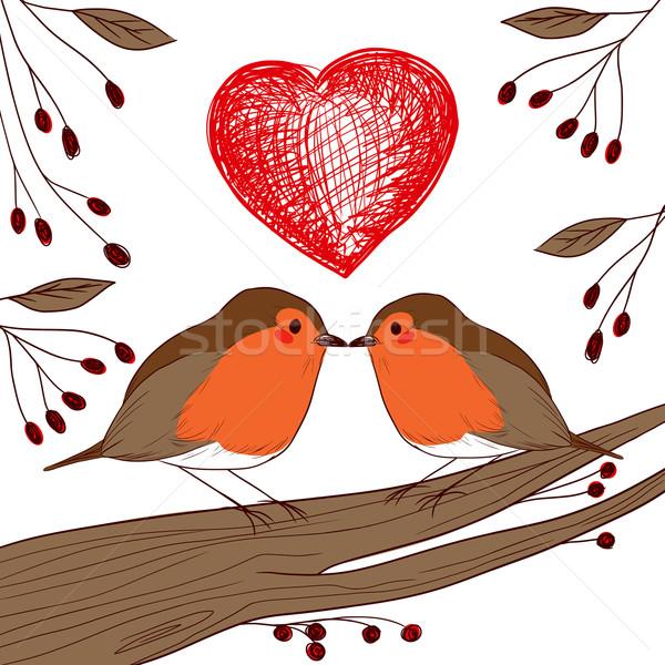 Robin Birds In Love Stock photo © Kakigori