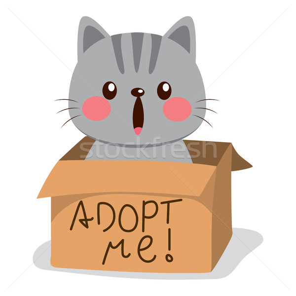 Adopt Me Cat Stock photo © Kakigori