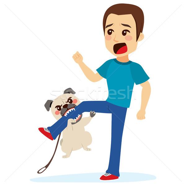 Hund jungen Angst Mann beißen Bein Stock foto © Kakigori