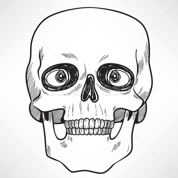 Ameaçador crânio linha arte ilustração assustador Foto stock © Kakigori
