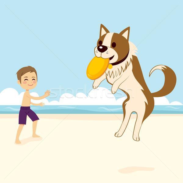 Dog Catching Flying Disk Stock photo © Kakigori