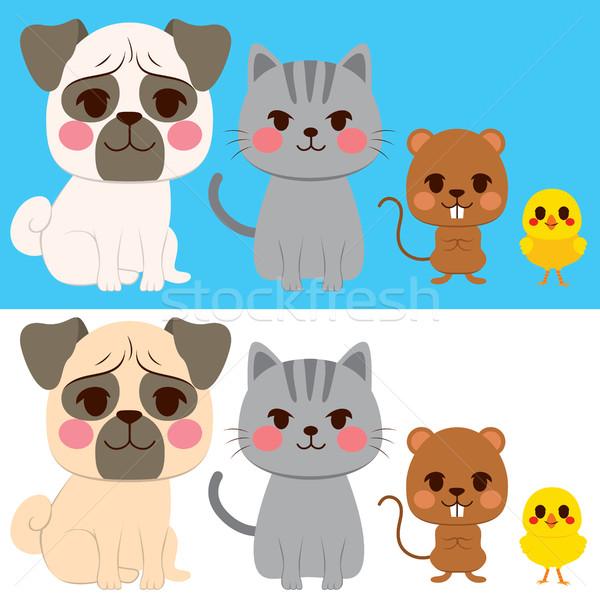 Domestic Pets Stock photo © Kakigori