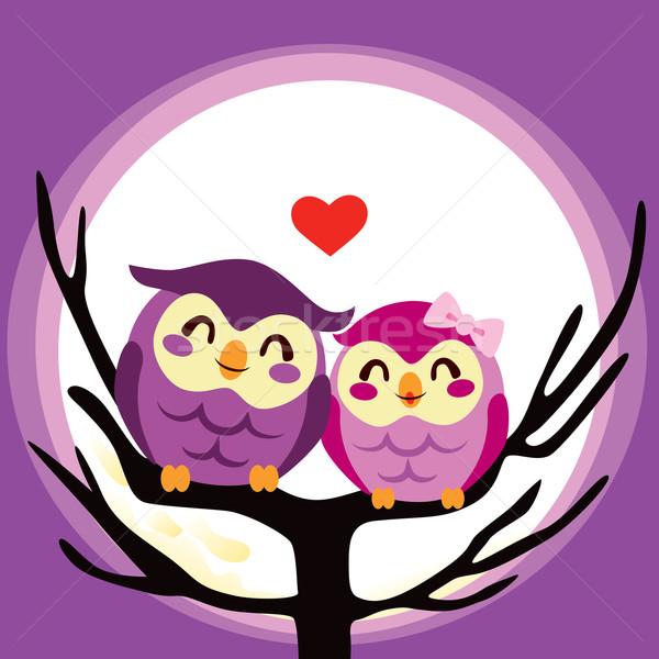 Stok fotoğraf: Baykuş · sevmek · çift · sevimli · birlikte · dolunay