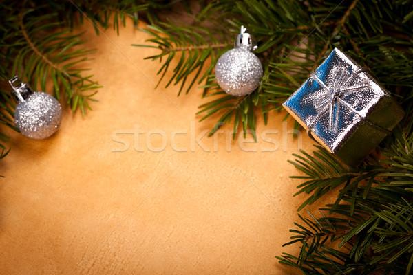 Primo piano Natale frame dettaglio ramoscello due Foto d'archivio © kalozzolak