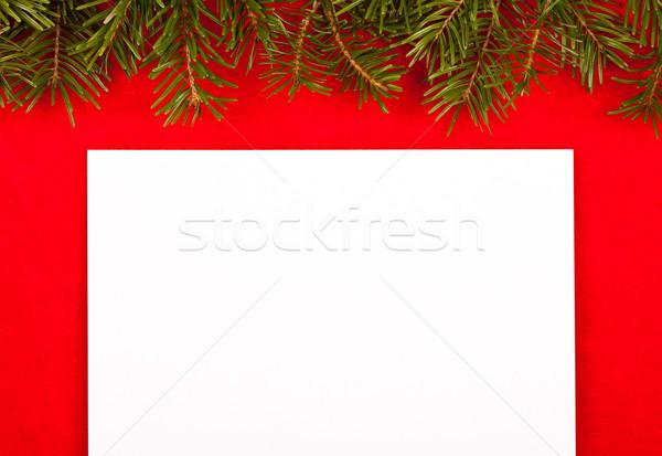 üres fehér papír piros bársony levelek Stock fotó © kalozzolak