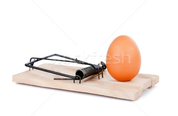 Egg and mousetrap Stock photo © kalozzolak