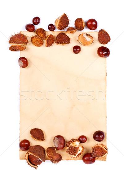 Carta da lettere ippocastano confine luogo autunno studio Foto d'archivio © kalozzolak