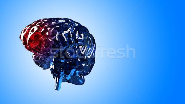 Esqueleto cerebro dolor 3d humanos aislado Foto stock © kalozzolak
