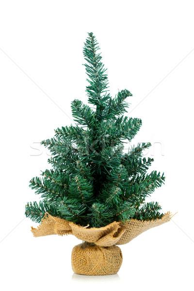Pinho pano de saco suporte pequeno árvore de natal branco Foto stock © kalozzolak