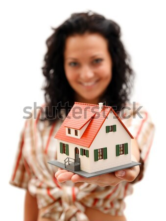 New house for Christmas Stock photo © kalozzolak