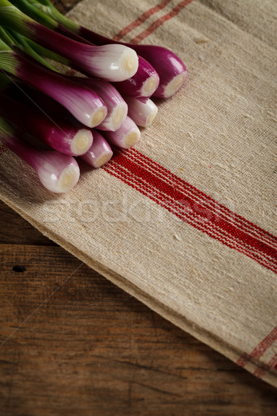 Green spring onions on tablecloth Stock photo © kalozzolak
