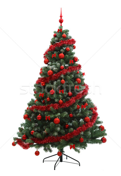 Christmas tree Stock photo © kalozzolak