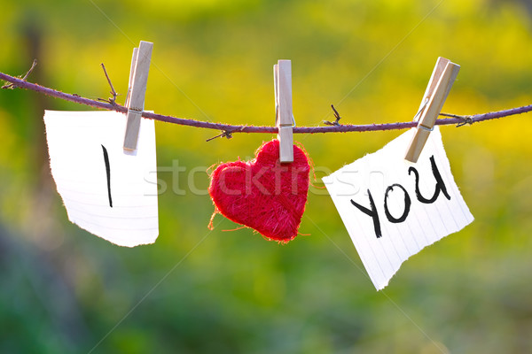 I Love You Stock photo © kalozzolak