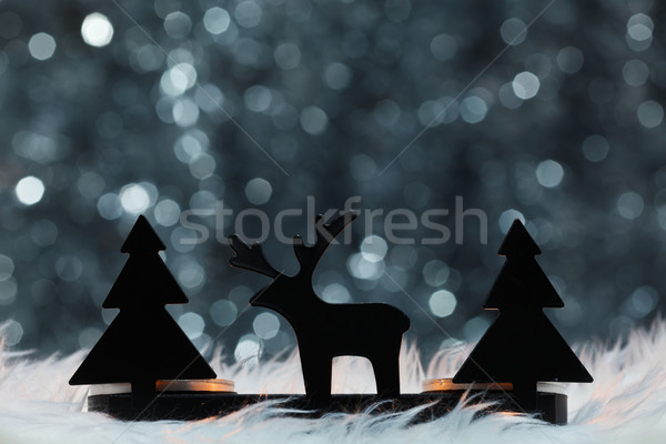 Winter ornaments Stock photo © kalozzolak