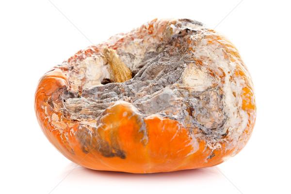 Rotten pumpkin Stock photo © kalozzolak