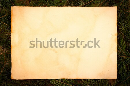 Old style paper on juniper leaves Stock photo © kalozzolak