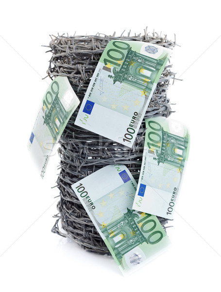 Money on barbed wire Stock photo © kalozzolak