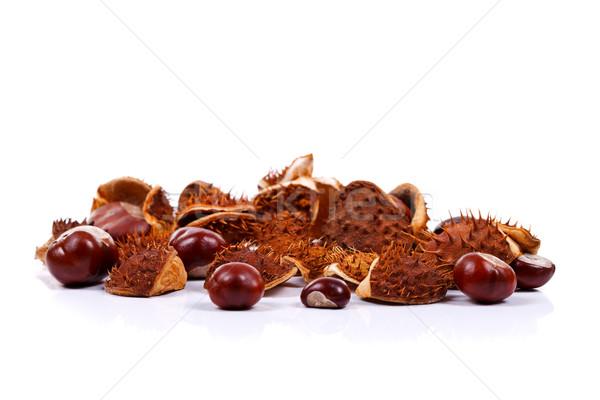 Chestnuts on white Stock photo © kalozzolak