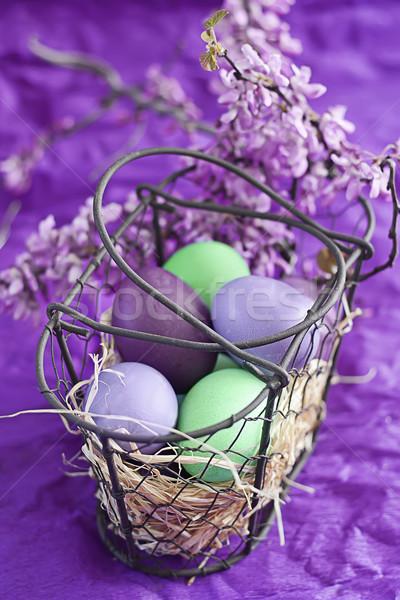 Ovos de páscoa cesta violeta roxo verde flores da primavera Foto stock © Karaidel