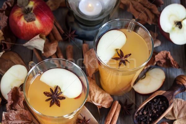 Caliente manzana sidra canela especias caída Foto stock © Karaidel