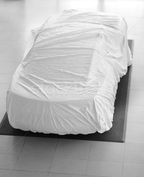 Car with white cover. Stock photo © karammiri
