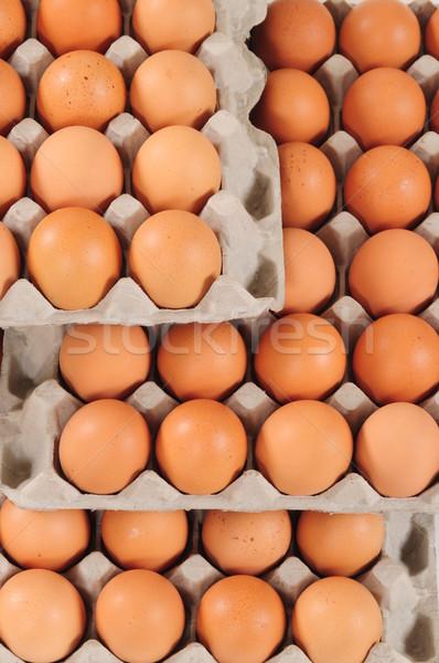 Eggs. Stock photo © karammiri
